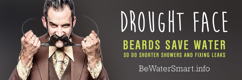 Beard_Billboard_BeardPres