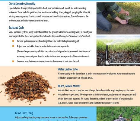 Landscape Survival Tip Sheet DRAFT